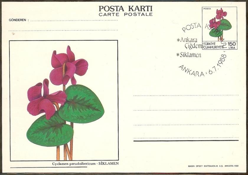 Çiçek resimli antiyeler - 6 Temmuz 1988