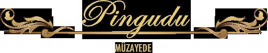 logo-pingudu
